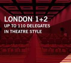 LONDON 1+2 – UP TO 110 DELEGATES – IN THEATRE STYLE