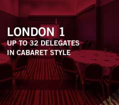 LONDON 1 – UP TO 32 DELEGATES – IN CABARET STYLE