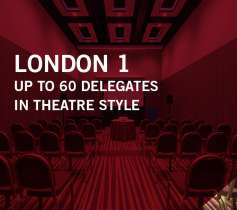 LONDON 1 –UP TO 60 DELEGATES – IN THEATRE STYLE